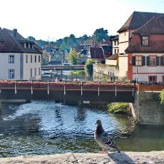 Rothenberg, Bamberg & RMD Canal