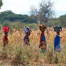 Tanzania People & Places